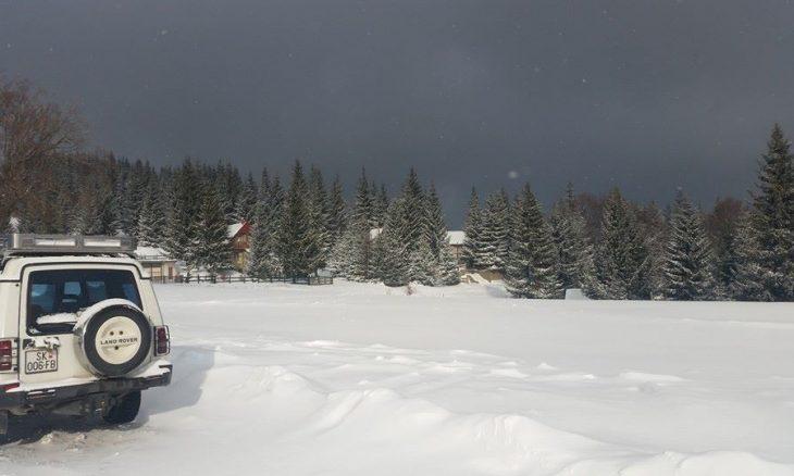 zimo-12