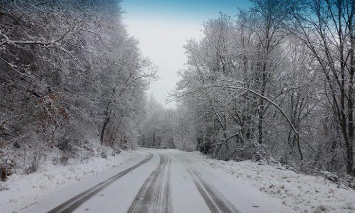 zimo-13