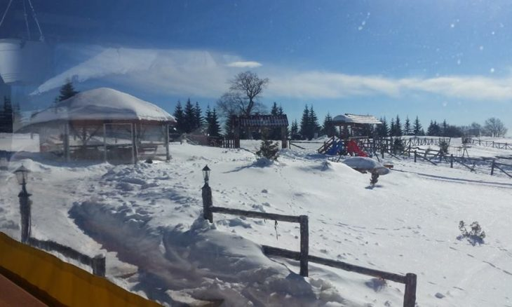 zimo-15