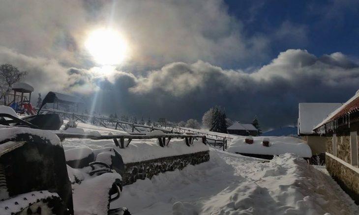 zimo-4