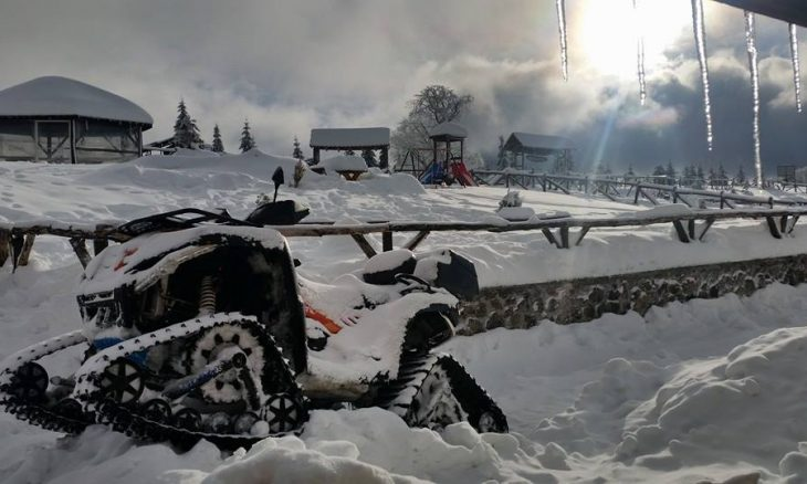 zimo-8